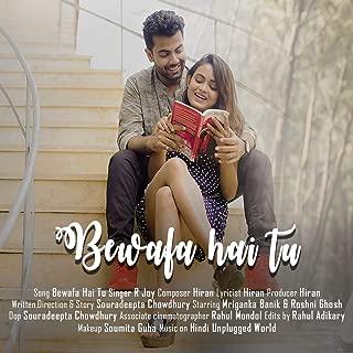 Best hindi bewafa song mp3 Reviews