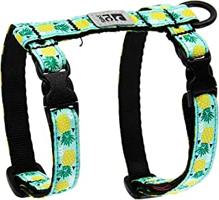 RC Pets Kitty Harness 2.0 Cat Walking Harness, Large, Pineapple Parade
