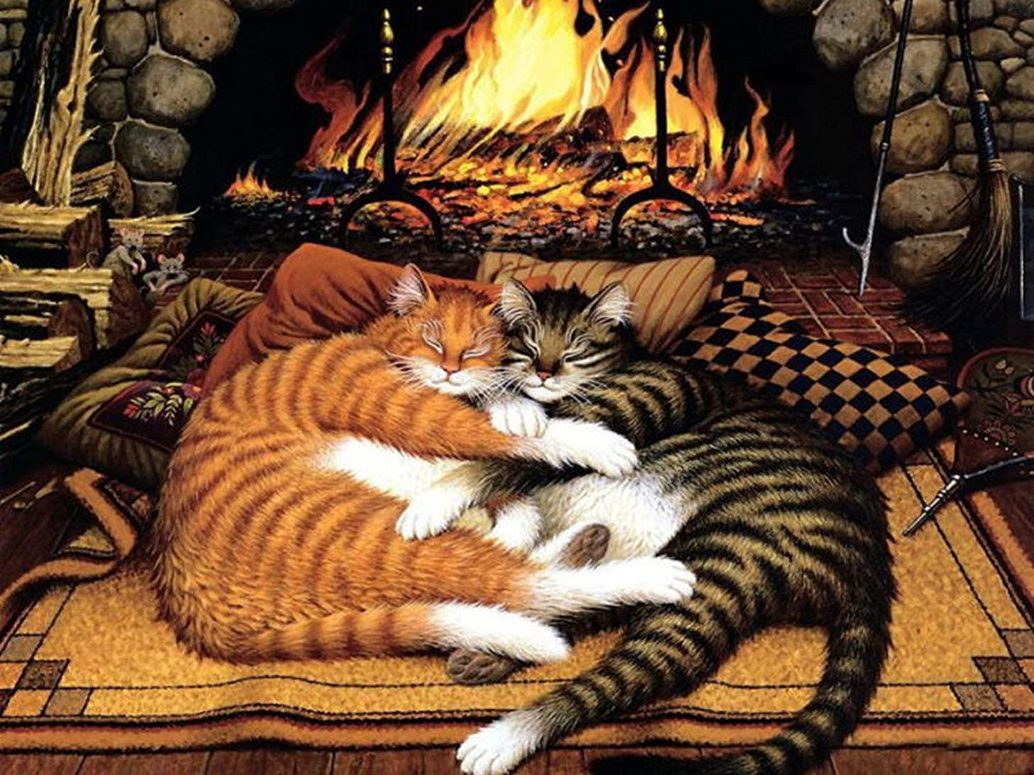Colour Talk Diy oil painting, paint by number kit - Orange cat and black cat 1620 inch.
