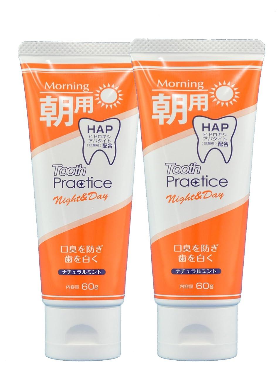 配るスパン許されるトゥースプラクティス ナイト&デイ Tooth Practice Night&Day 2本セット 60g×2 (昼用)
