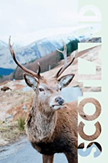 Scotland: Scottish Stag Cool Composition Book Notebook Journal Diary for Men, Women, Teen and Kids for Notes on Traveling ...