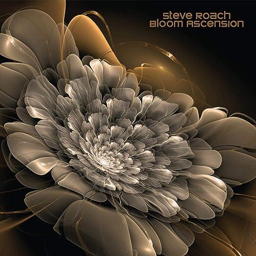 Bloom Ascension
