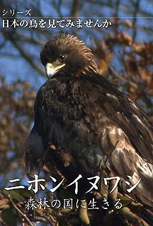 シリーズ日本の鳥を見てみませんか ニホンイヌワシ 森林の国に生きる [DVD]...