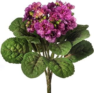 Silk African Violet Plant in Plum Purple - 12