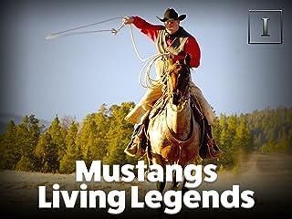 Mustangs - Living Legends