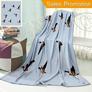 """Ailieo Unique Custom Flannel Blankets Canada Goose Branta Canadensis in Flight Clear Sky Traveling Feather Picture Blue Grey Black Super Soft Blanketry for Bed Couch, Throw Blanket 40"""" x 60"""""""