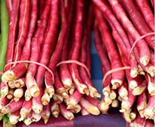 Sow No GMO Bean Pole Yard Long Red Noodle Non GMO Heirloom Vegetable 100 Seeds