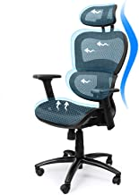 Ergousit Ergonomic Office Chair High-Back Executive Chair with Lumbar Support Breathable Mesh Work Chair with Adjustable H...