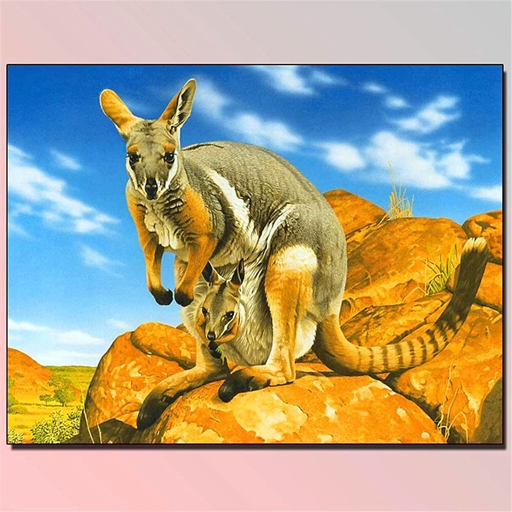 DIY 5D Diamond Painting Kits Picture quality assurance Drill Full Kangaroo 55% OFF Adults