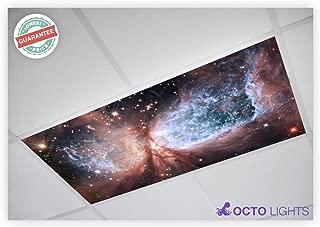 Astronomy 008 2x4 Flexible Fluorescent Light Cover