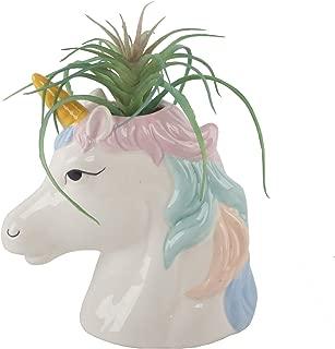Flora Bunda Artificial Succulent in Unicorn 6 inch Tall Cute Animal Novelty Multi Color Ceramic Unicorn Pot Planter