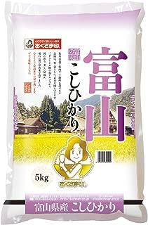 【精米】 富山県産 白米 コシヒカリ 5kg 令和元年産