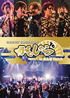G.U.M 1st ONEMAN LIVE がむしゃら10 in なんばHatch [DVD]