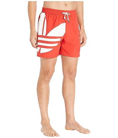 adidas Originals Big Trefoil Swim Shorts (Lush Red) Men