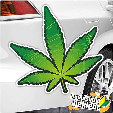 Kiwistar Hanf In 7 Größen Erhältlich Aufkleber Mehrfarbig Sticker Funsticker Colored Auto
