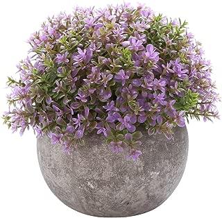 HC STAR Artificial Plant Potted Mini Fake Plant Decorative Lifelike Flower Green Plants - 1204