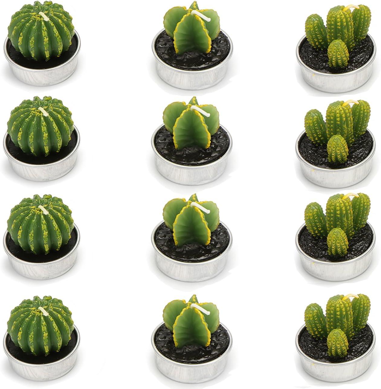 Ogrmar 12 Baltimore Mall PCS Cactus Candles Decorative Ho for Finally resale start Light Tea