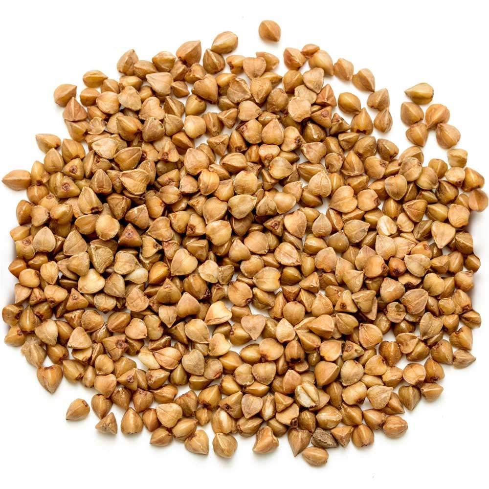 Plant N Plate BUCKWHEAT Seeds|Gluten Free BUCKWHEAT Groats|KUTTU (400 Grams): Amazon.in: Grocery & Gourmet Foods