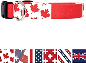 embroidered dog collars canada
