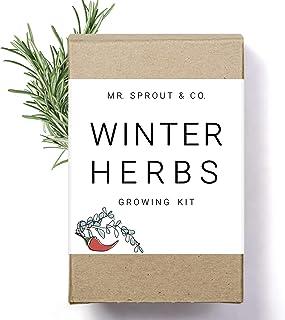 Winter Indoor Garden Kit - Herb Garden Seed Starter Kit for Gardening Indoors | Plant Grow Kit with Sage Ro...