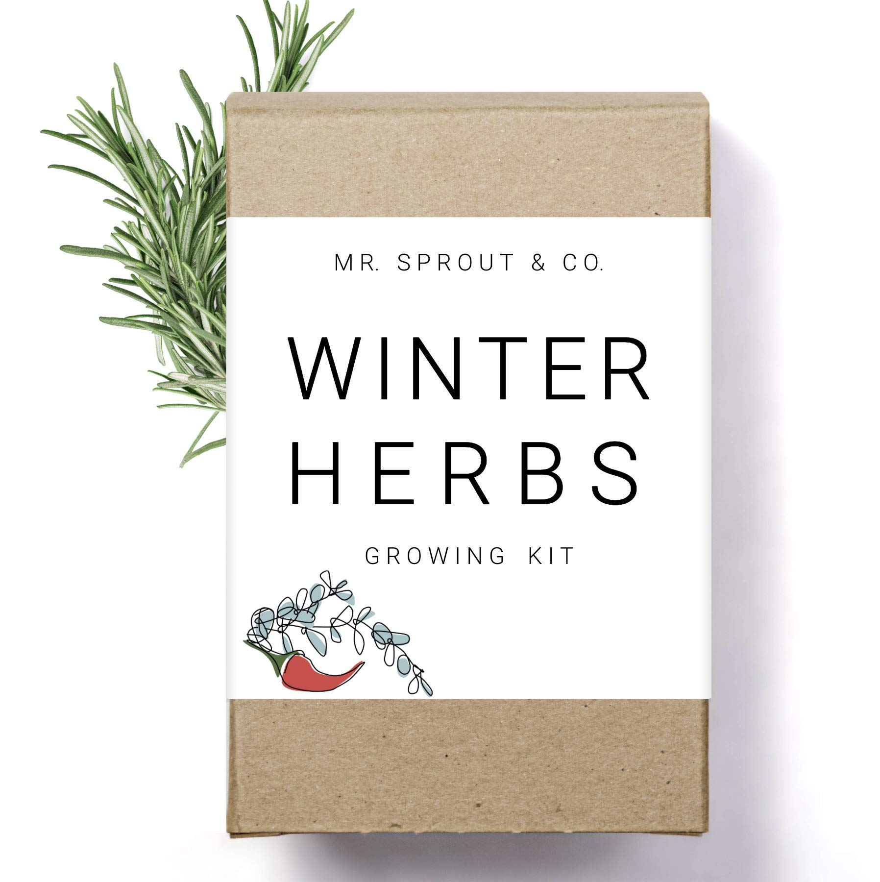 Amazon Com Winter Indoor Garden Kit Herb Garden Seed Starter Kit For Gardening Indoors Plant Grow Kit With Sage Rosemary Seeds And Hot Pepper Seeds For Planting Growing Fresh