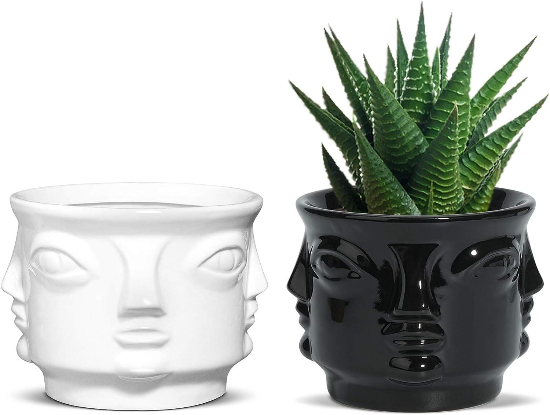 OppsArt Face Succulent Pot Ceramic Set of Head Ranking TOP12 Don't miss the campaign Cactus 2 P Human