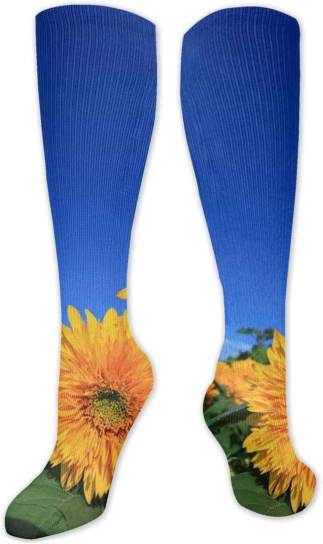 Cloudy Sunflowers Field Knee High Socks Leg Warmer Dresses Long Boot Stockings For Womens Cosplay Daily Wear