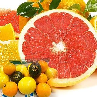 果物セット 詰め合わせ 渋谷ハヤシフルーツ プレミアムフルーツセレクション グレープフルーツ オレンジ セット1 母の日 ギフト