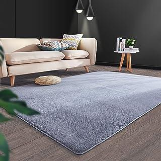 Area Rug Fluffy Rugs Shaggy Carpet Bedside Floor Mat Super Soft Non-slip Silky Smooth for Living Room Dining Room Bedroom ...