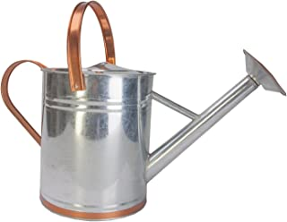 Best galv watering can Reviews
