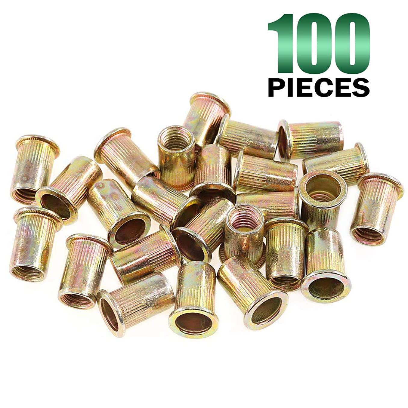 Keadic 100Pcs Metric Zinc Plated Carbon Steel Rivet Nut Flat Head Threaded Insert Nutsert Kit (M10)