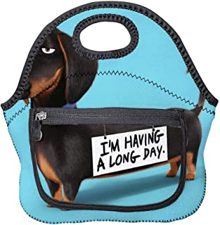 Lunch bag Meal bag buddy the secret life of pets Thermal and Cooling