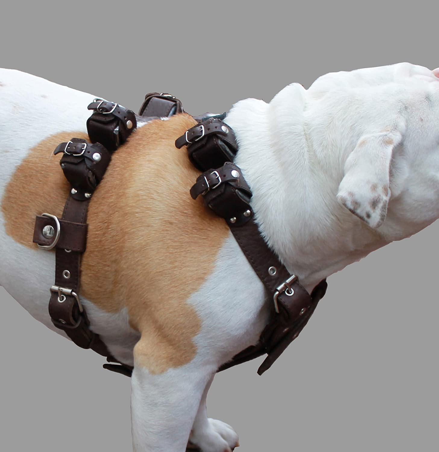 6 lbs Genuine Leather Weighted Pulling Dog Harness for Exercise and Training. Fits 28 35  Chest, Brown