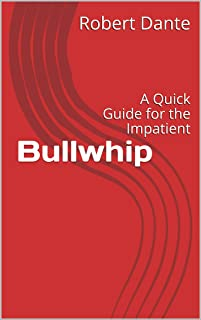 Bullwhip: A Quick Guide for the Impatient