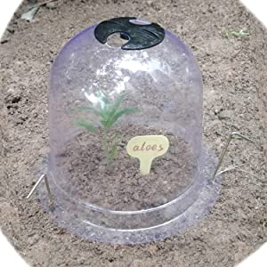 TCBWFY Garden Cloche Plant Dome 6 Pack Humidity Dome Plastic Plant Protect Bell Cover 8