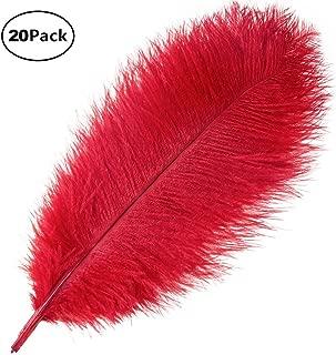 MELADY 2~4 Fashion Dress Sewing Crafts Costumes Decoration Dyed Pheasant Feathers Burgundy, 50PCS
