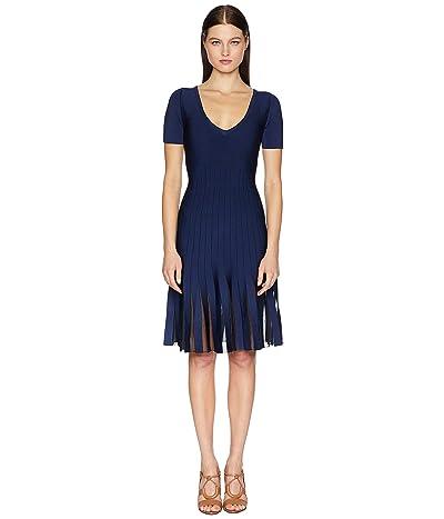 Zac Posen Knit Radiant Stripe Dress (Navy/Black) Women