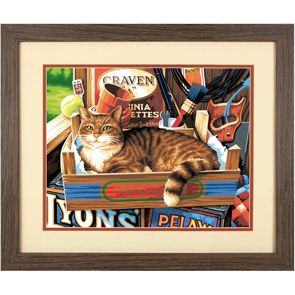 Dimensions 73-91655 Cat Signs Paint by Numbers for Adults, 14'' W x 11'' L