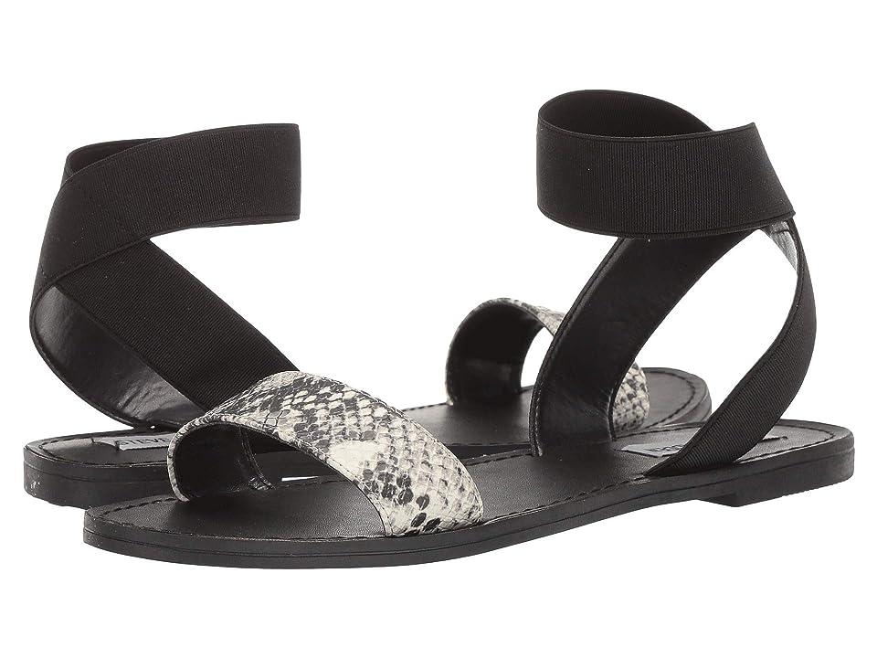 Steve Madden Rhody (Black Multi) Women's Shoes