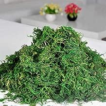 IMIKEYA 1 Bolsa de liquen de Musgo Artificial simulaci/ón de Musgo preservado Plantas Verdes Faux liquen Musgo Falso para decoraci/ón jard/ín Patio 20g