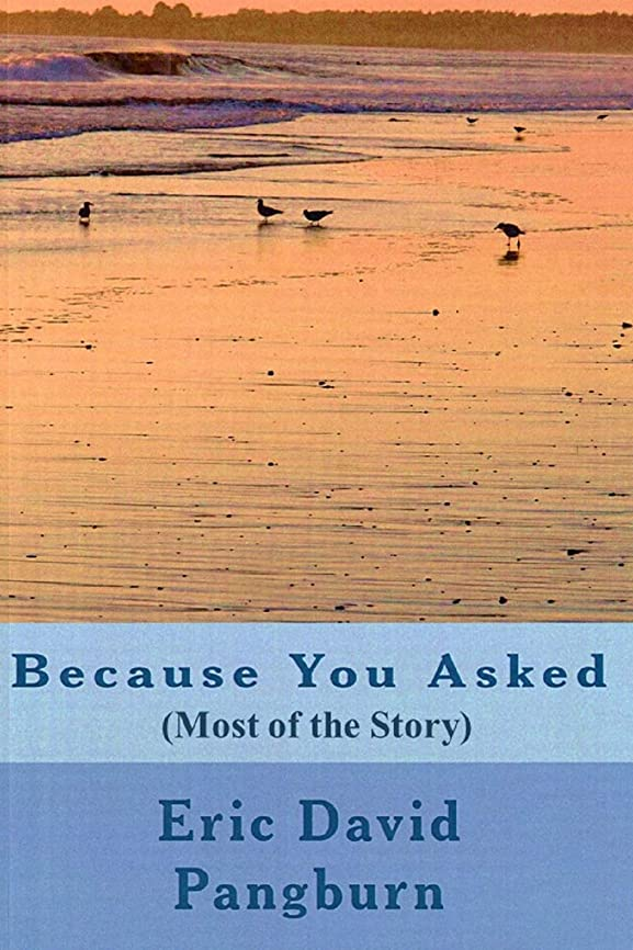 アウター神青Because You Asked: (Most of the Story) (English Edition)