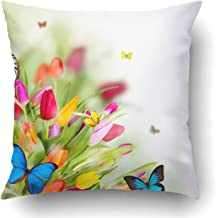 Emvency Decorative Throw Pillow Cover Case for Bedroom Couch Sofa Home Decor Beautiful Spring Flowers with Butterflies Square 18x18 Inches Garden Flowers