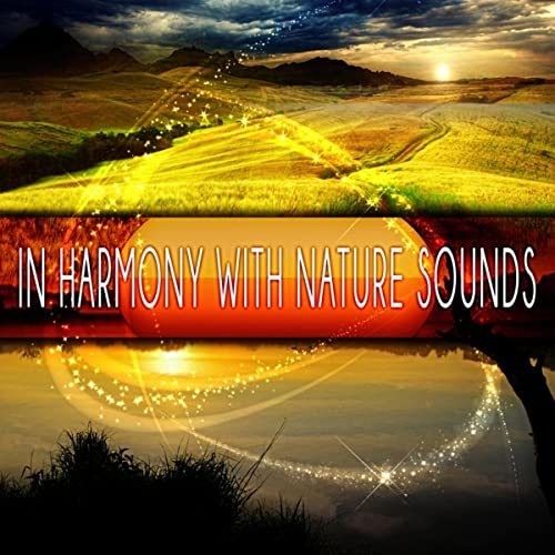 In Harmony with Nature Sounds - New Age Music for Training ...
