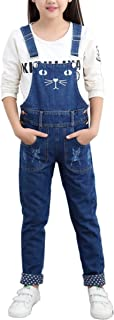 Rosiika Girls Big Kids Long Jeans Cute Cat Embroidered Distressed Denim Bib Overalls 1P