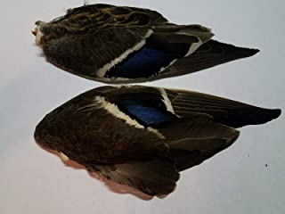 Winter's Hope Fly & River Mallard Wing Mated Pair