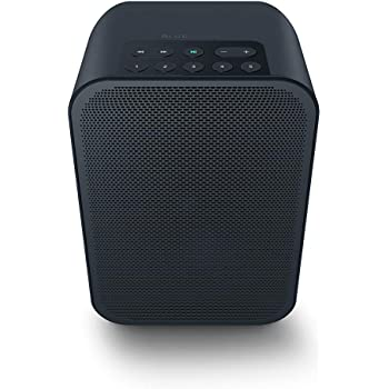 Bluesound Pulse Flex 2i Portable Wireless Multi-Room Smart Speaker with Bluetooth - Black - Compatible with Alexa and Siri