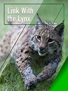 Link with the Lynx