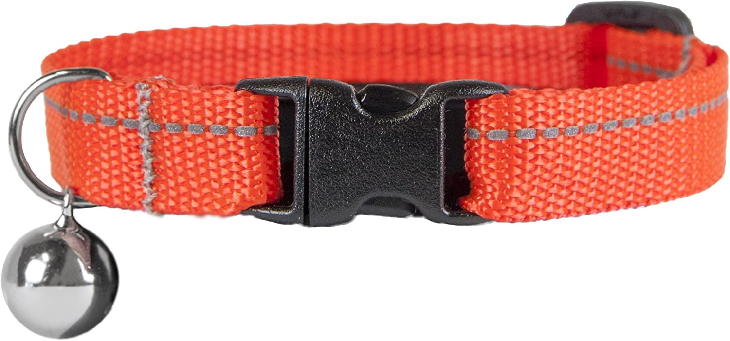 RC Pet Products 1 2  Primary Collection Kitty Breakaway Cat Collar, orange