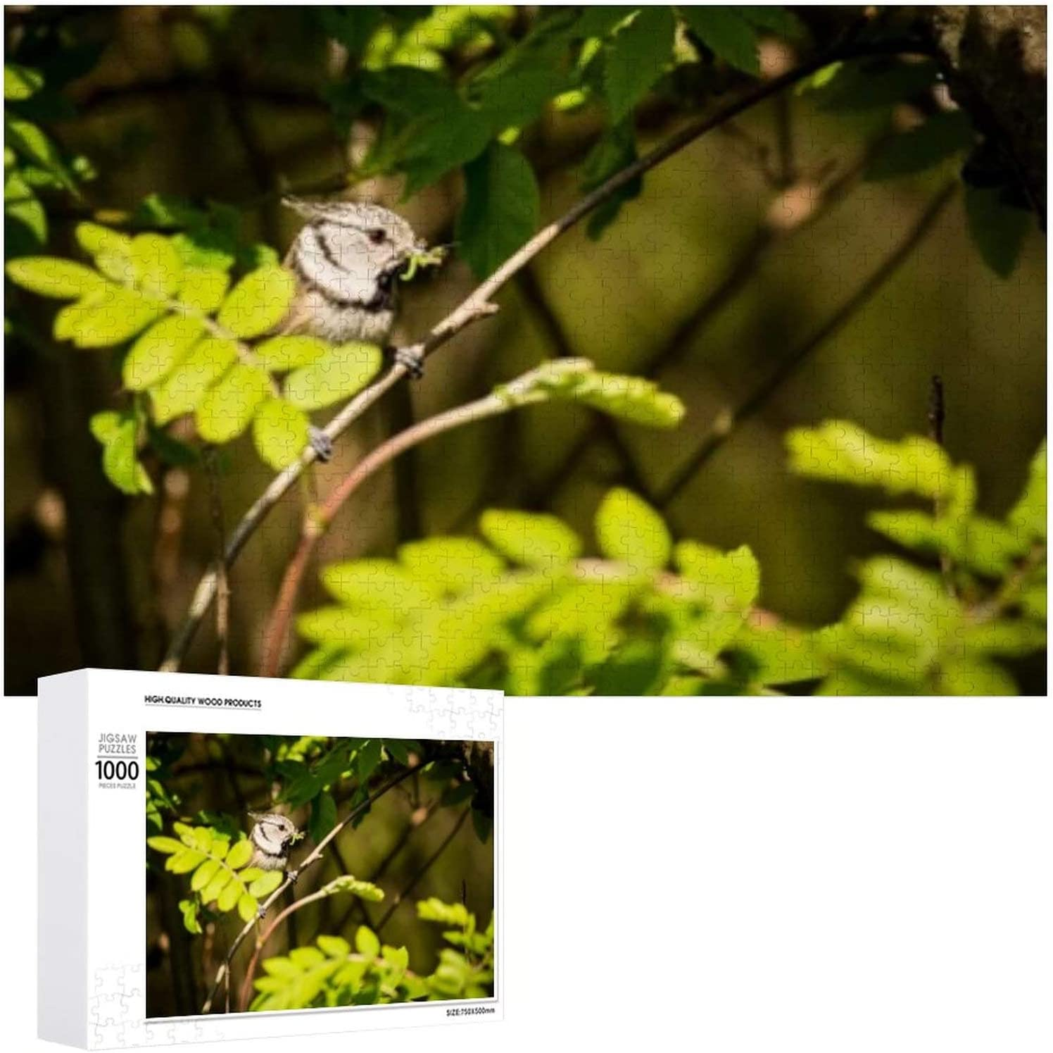 Close Crested Tit Small 70% OFF Outlet Bird Max 67% OFF - Adults 1000 Puzzles for Jigsaw