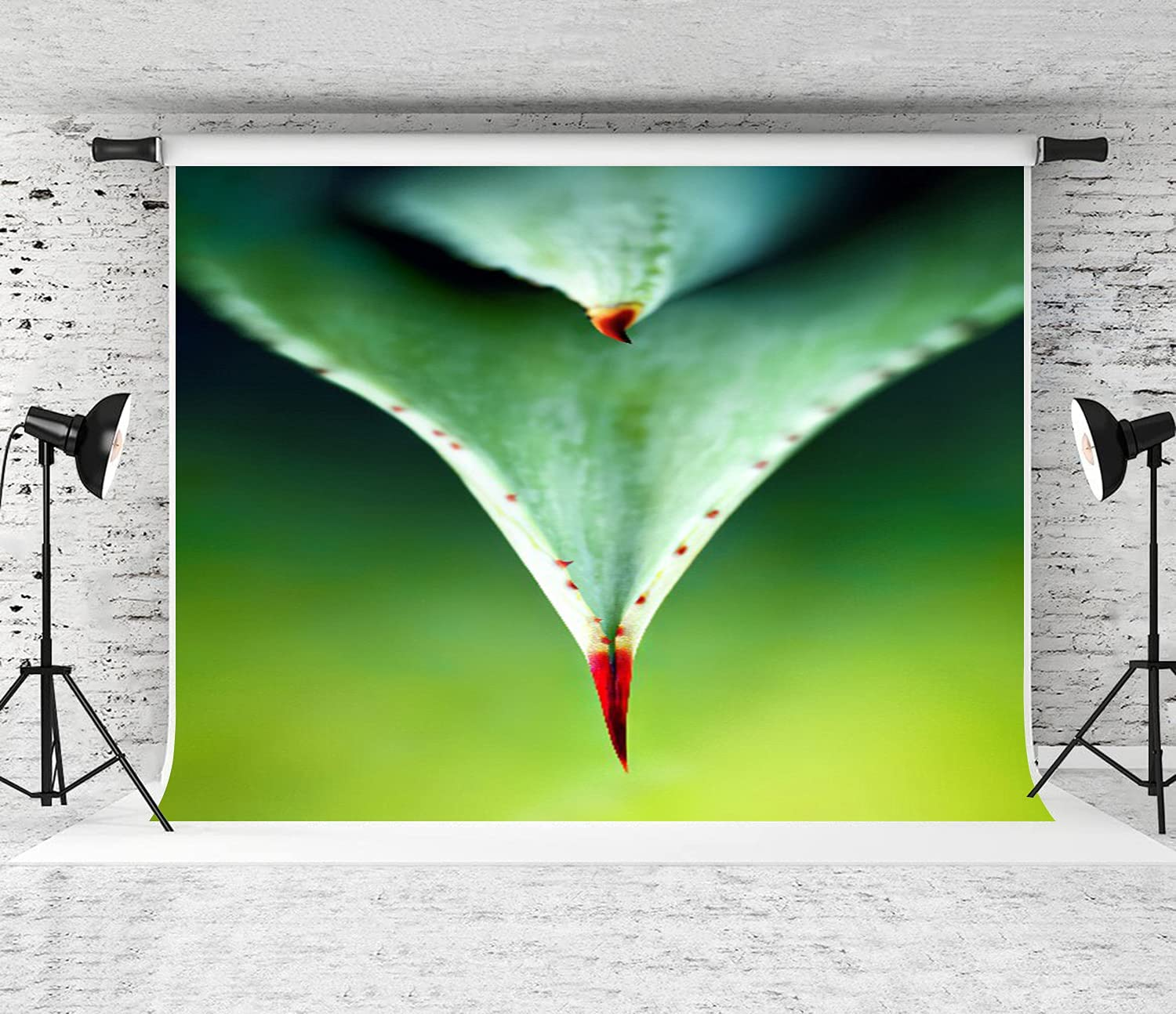 ZOANEN Fixed price for sale Photography Background Aloe Leaf Thorn Gree Hard up Spring new work Close